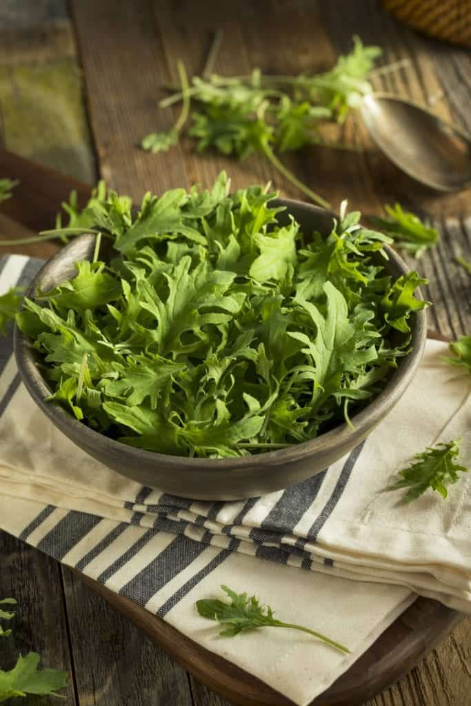 10 Powerhouse Vegetables You Should Not Miss Out On